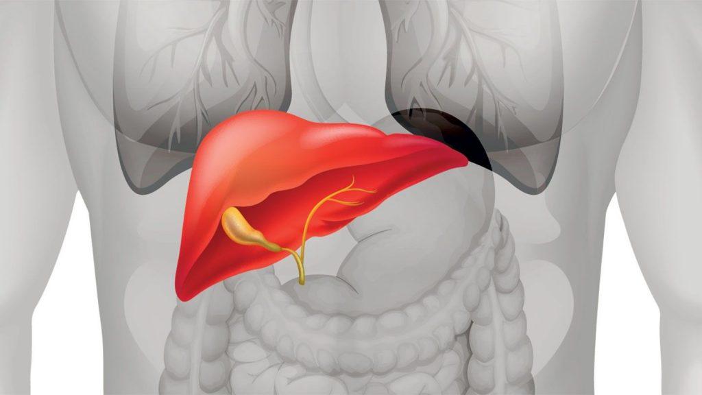 4 món ăn và 2 hành động có thể gây hại cho gan mà bạn nên biết ngay hôm nay