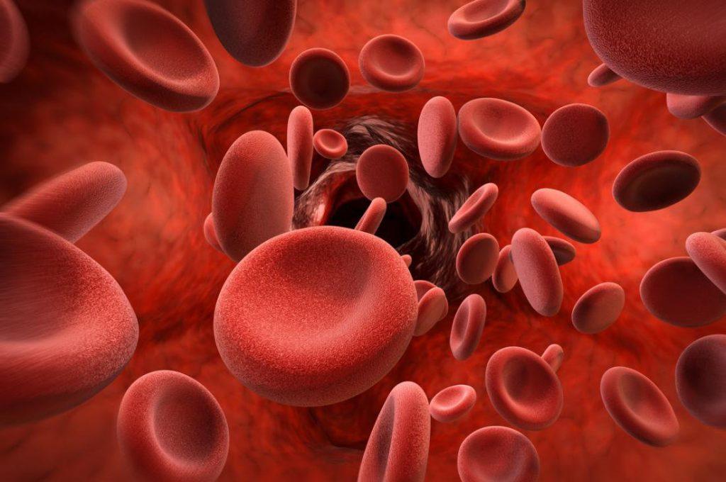 Các triệu chứng của bệnh máu khó đông không thể ngó lơ